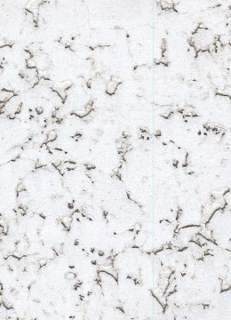 CR 172 DC Condor Snow